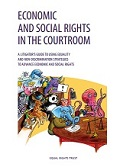 Economic and Social Righs in the Courtroom: A Litigator's Guide