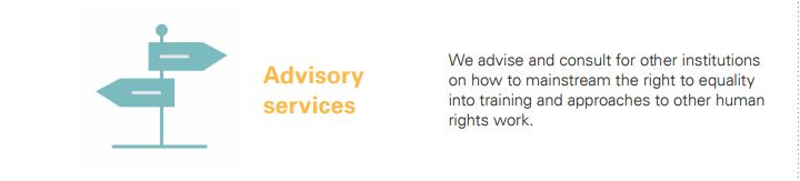 We advise and consult for other institutions on how to mainstream the right to equality into training and approaches to other human rights work.